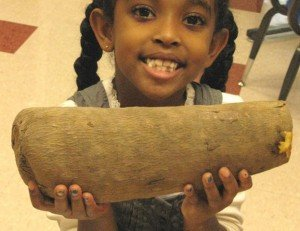 This is what a real yam looks like. Nothing like sweet potatoes!