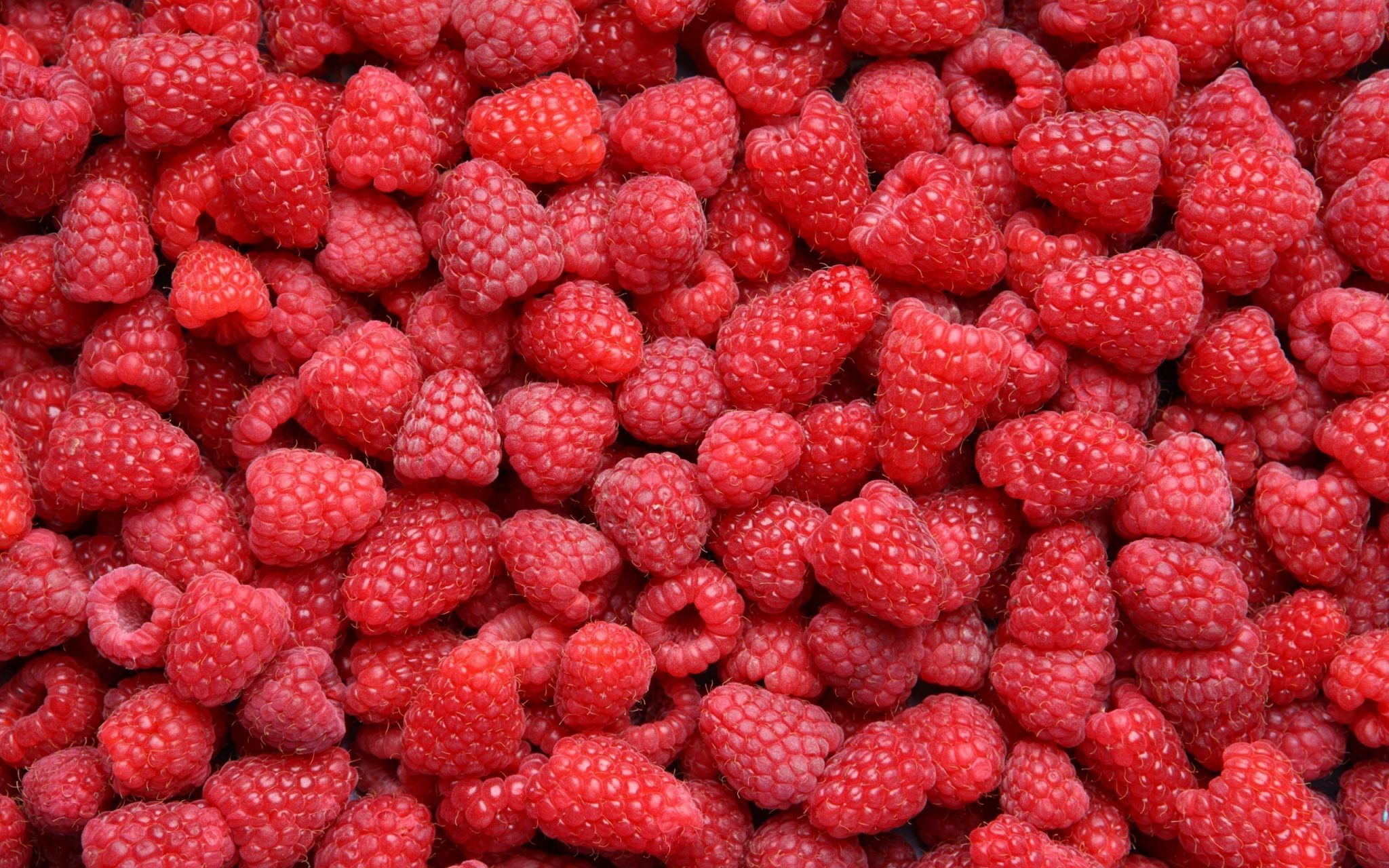 Image Result For Foods That Can